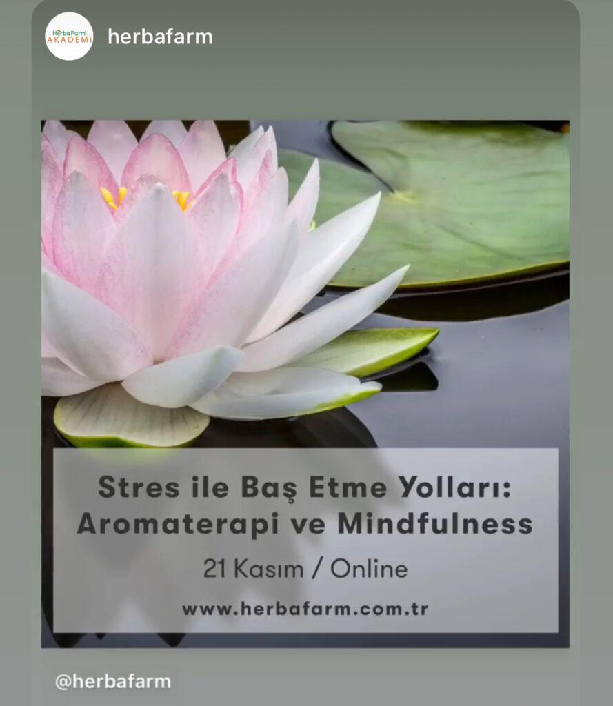 Stresle Baş Etme Yolları: Aromaterapi ve Mindfulness